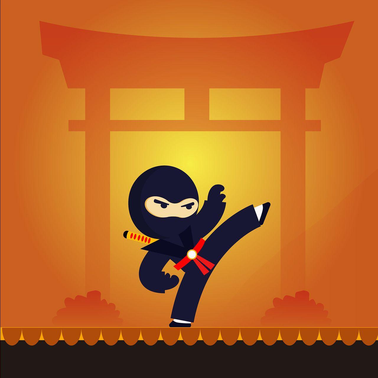 ninja guerrero