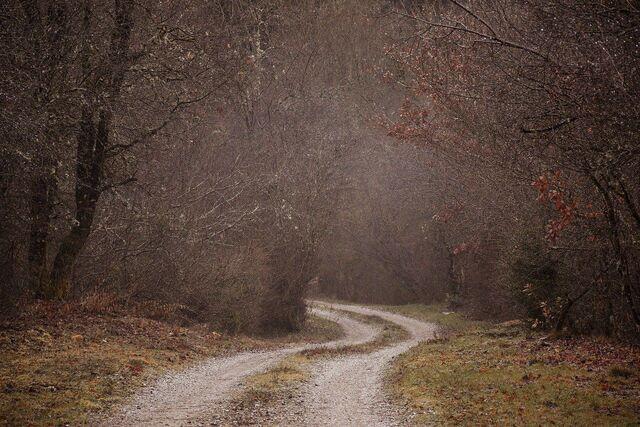 jalanan sepi dan angker